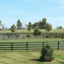 Oak Fencing Enclosure For Horses