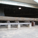 30 ft Log on the log deck